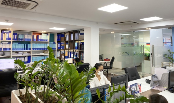 """DINCO BECOMING A """"GREEN"""" WORKPLACE AFTER SOCIAL DISTANCING"""